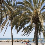 Beach - Malaga Spanish School