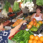 Tropical Coast Languages - Market