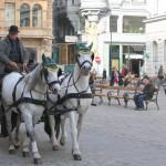 German courses in Vienna at Actilingua