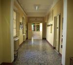 Centro Internazionale Dante Alighieri