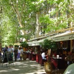 French Courses in Aix-en-Provence