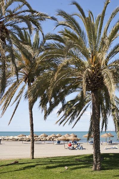 Beach - Malaga Spanish School