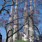 Spanish Courses in Barcelona - Sagrada Familia