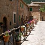 Activities - Spanish Courses in Palma de Mallorca