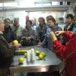 Accademia Italiana Salerno - Limoncello Factory Excursion